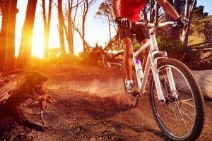 bike_bos_actie-500x333